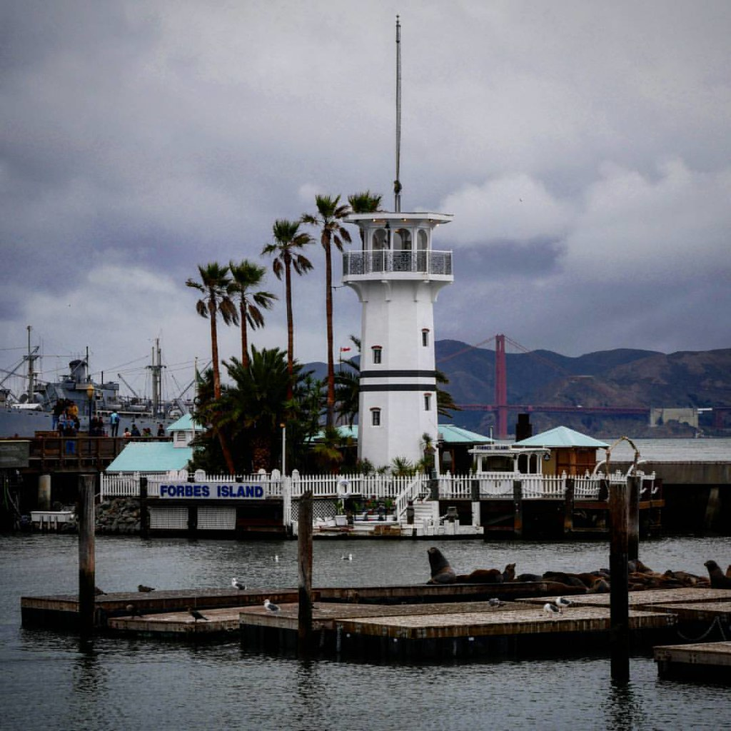 Forbes Island San Francisco #forbesisland #sealion #seali ...