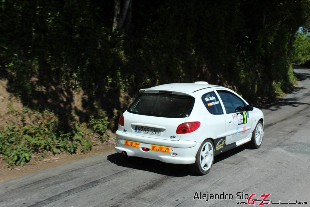 vi_rally_comarca_da_ulloa_221_20150307_2042048535