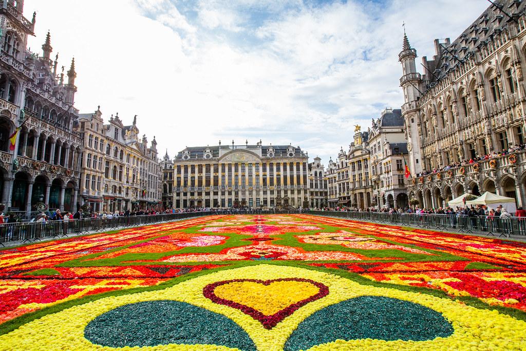 belgique bruxelles grand place tapis de fleurs 2014 flickr