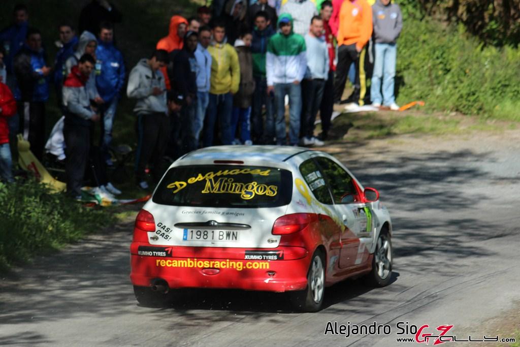 vi_rally_comarca_da_ulloa_198_20150307_1087564651