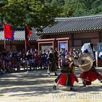 29 Corea del Sur, Suwon 10