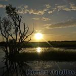 02 Viajefilos en Australia, Kakadu NP 099