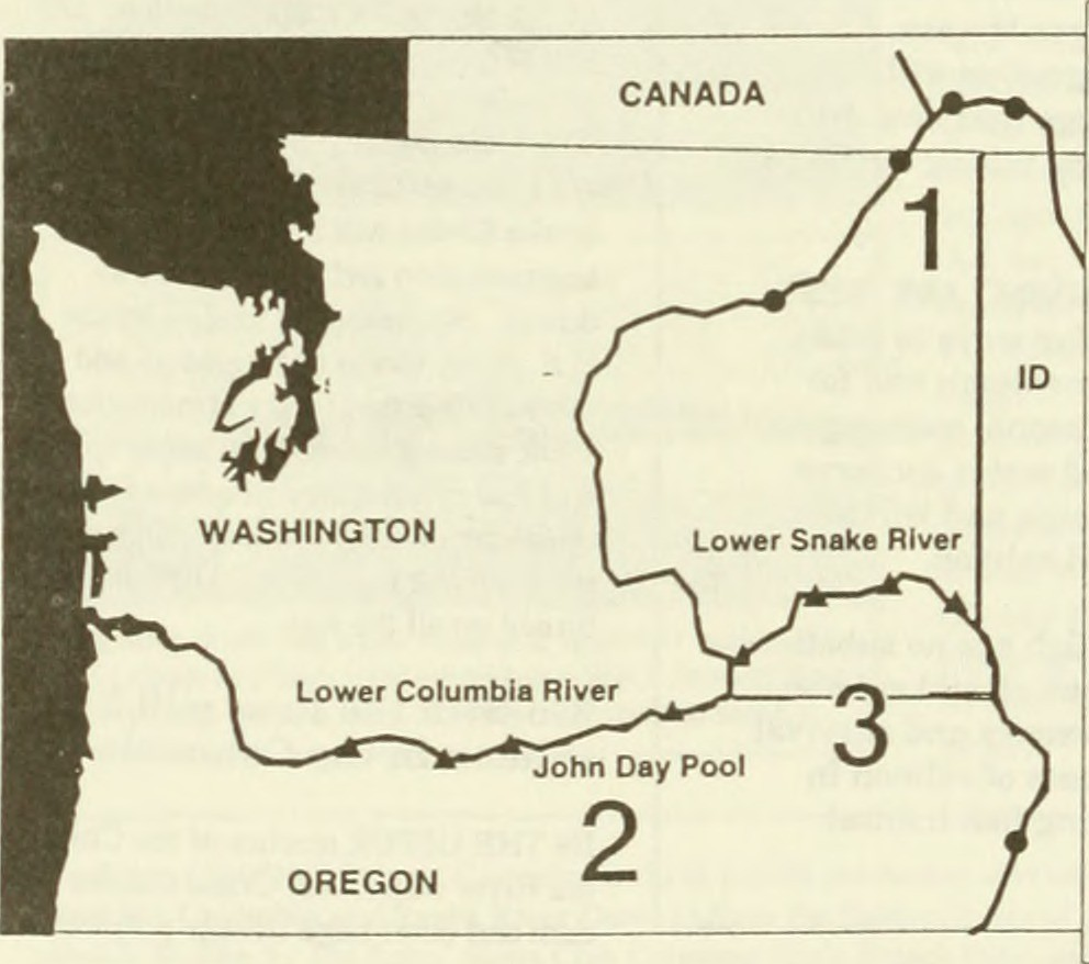 medium resolution of  image from page 213 of columbia river basin fish and wildlife program salmon