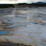72-Yellowstone. Norris Geyser Basin
