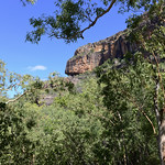 02 Viajefilos en Australia, Kakadu NP 044