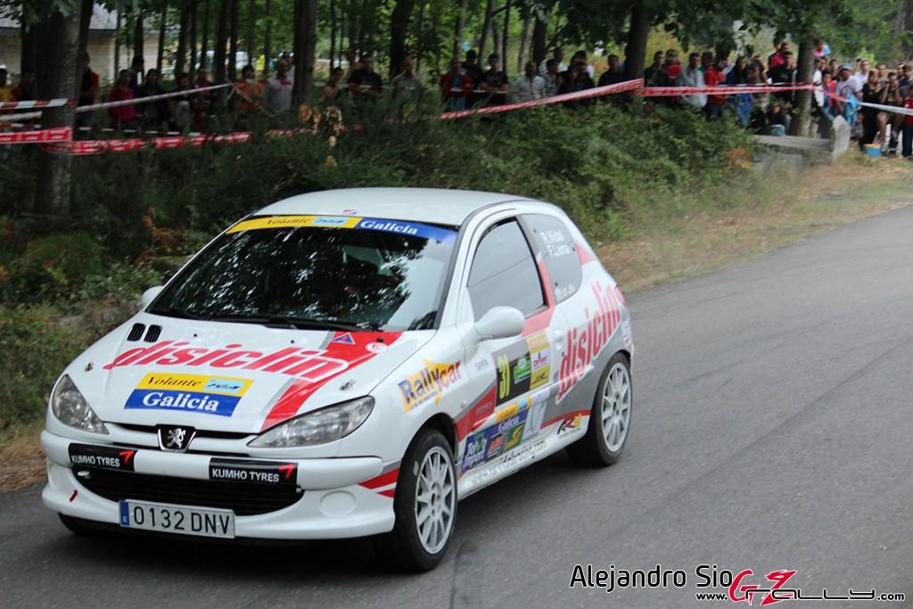 x_rally_sur_do_condado_118_20150307_1703190358