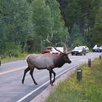 10- Rocky Mountain NP