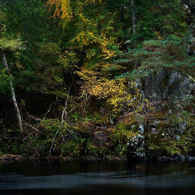 River Findhorn Autumn II (Square Crop)