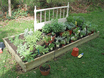 flowerbed_planting
