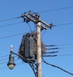 old 3 ph pole transformer by en tee gee [ 1024 x 768 Pixel ]