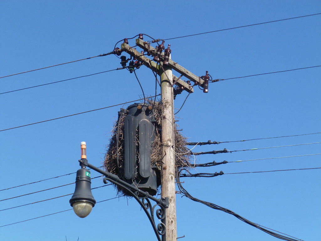hight resolution of  old 3 ph pole transformer by en tee gee