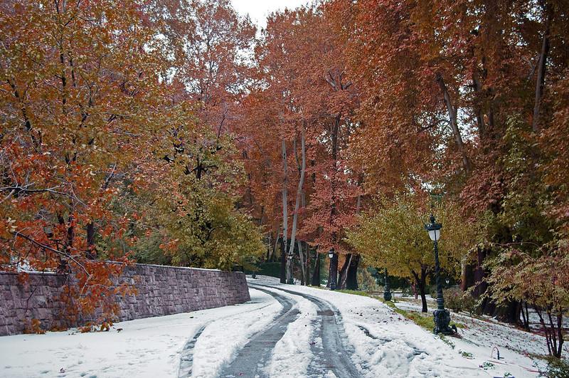 autumn colors in tajrish