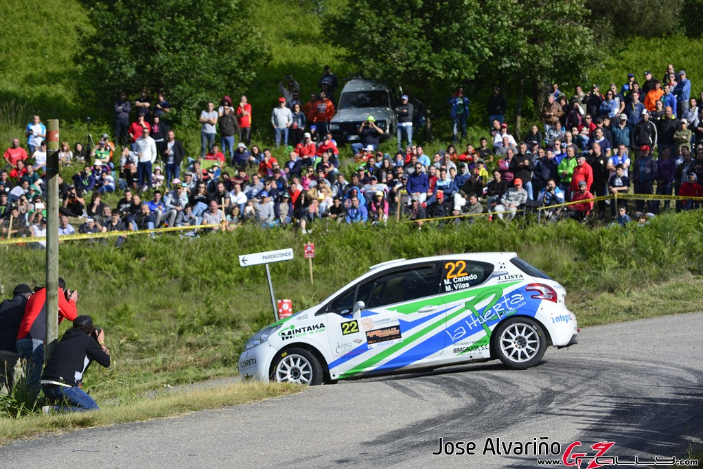 rally_de_ourense_2016_-_jose_alvarino_129_20160621_1834193752