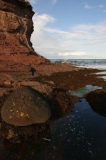 Rocky pool at Seacliff
