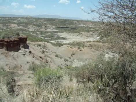 video 02 yacimiento paleontológico y arqueológico prehistórico cultura olduvayenses y achelenses garganta de Olduvai o Oldupai Tanzania