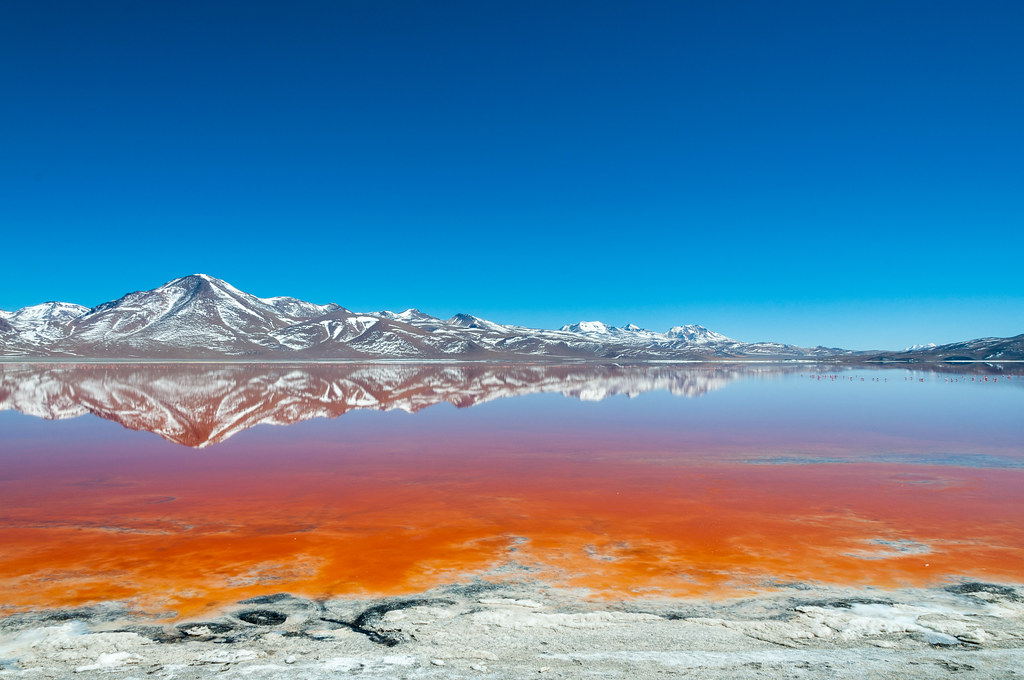 Laguna Colorada in the morning