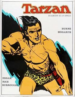 Tarzan Seigneur De La Jungle : tarzan, seigneur, jungle, Tarzan,, Seigneur, Jungle.