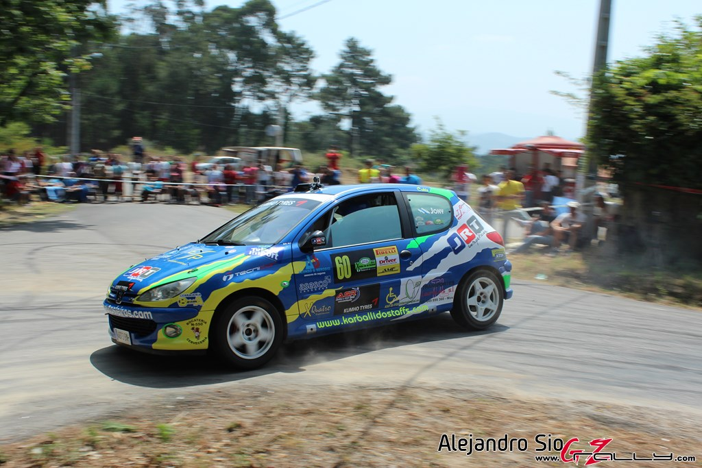 x_rally_sur_do_condado_89_20150307_1268426080
