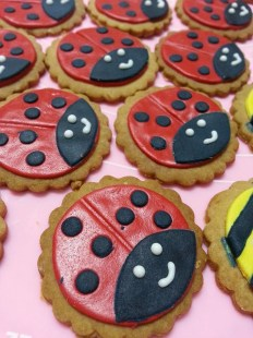 lady bugs cookie