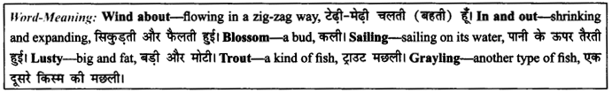 NCERT Solutions for Class 9 English Literature Chapter 6 The Brook 11