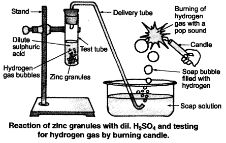 NCERT Solutions for Class 10 Science Chapter 2 Intext Questions p20 Q2