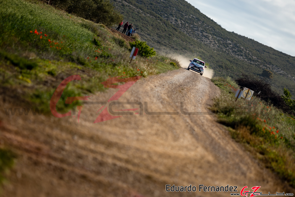 Rally_Navarra_EduardoFernandez_19_0022