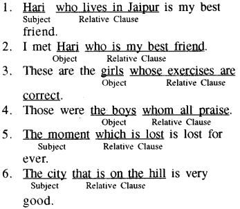 RBSE Class 8 English Grammar Relative Clauses 1