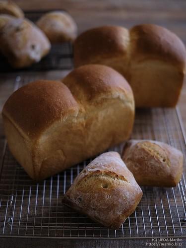 苺酵母のリュスティック 食パン20190509-DSCT1282 (2)