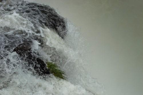 Iguazu 2016-1180