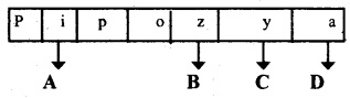 Plus Two Zoology Chapter Wise Previous Questions Chapter 4 Molecular Basis of Inheritance