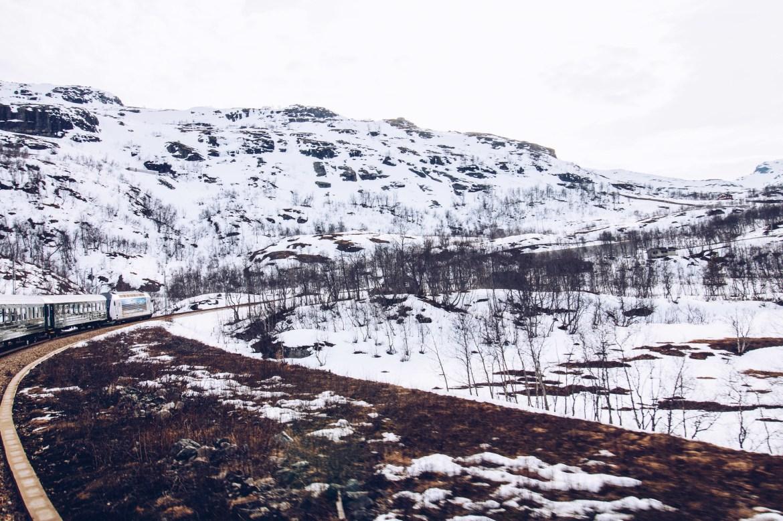 Flåm till Myrdal - Flåmsbanan - reaktionista.se