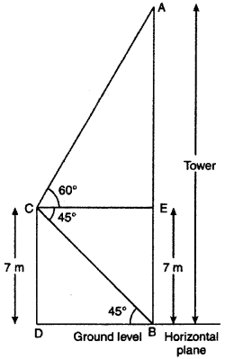 RBSE Solutions for Class 10 Maths Chapter 8 Height and Distance Q.19