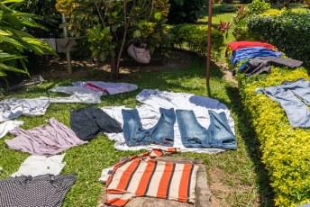 In Afrika worden gewassen kleren vaak zo gedroogd, weten we ook weer waarom we vaak beestjes in onze kleding aantreffen.
