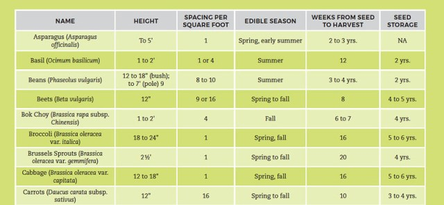 Square-Foot Gardening Cheat Sheet