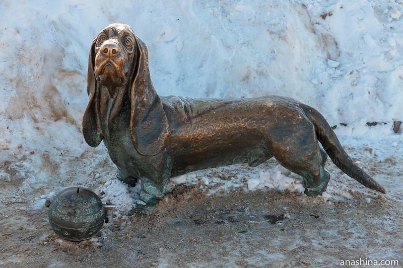 Памятник собаке по кличке Дружок, Кострома