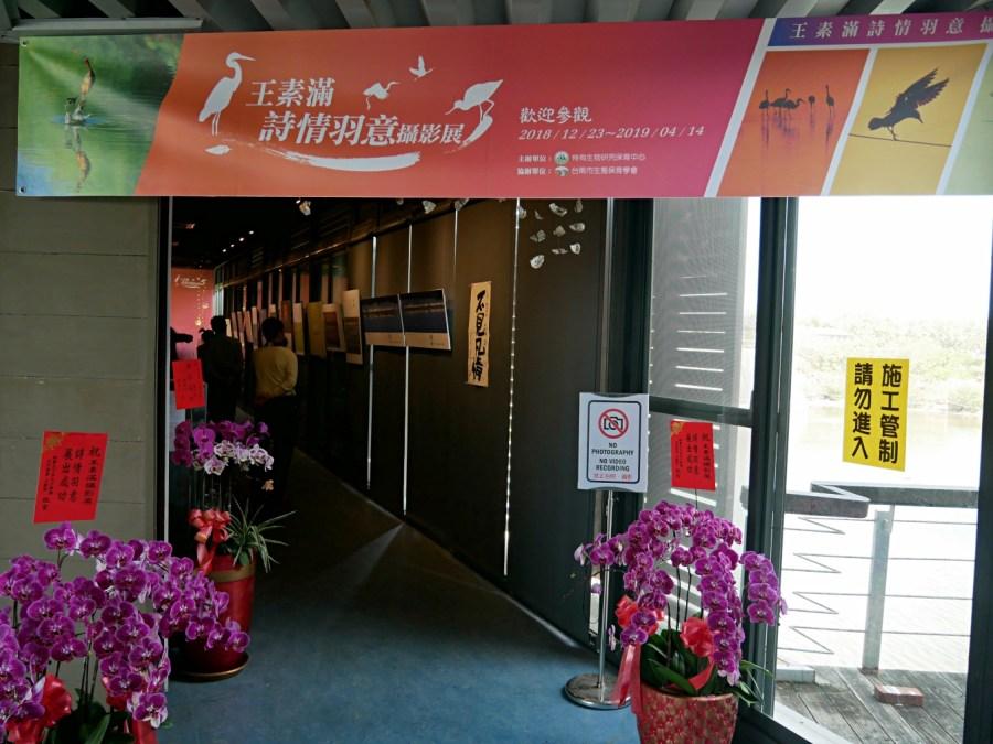 七股區,免費景點,台南旅遊,台江國家公園,濕地賞鳥,親子旅遊,黑面琵鷺生態展示館 @VIVIYU小世界