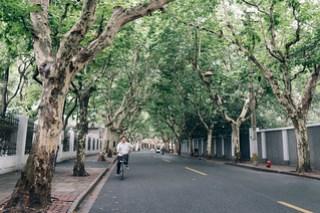 Ferguson Lane(武康庭), Shanghai