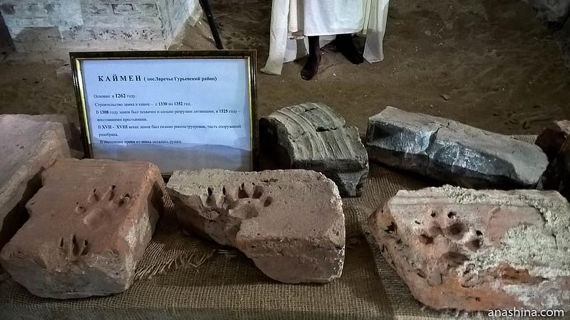 Кирпичи с отпечатками лап волков из замка Каймен, Янтарный