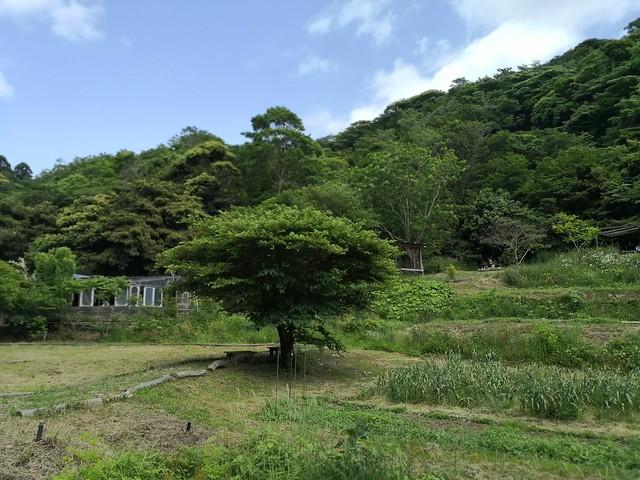SYOKU-YABO農園