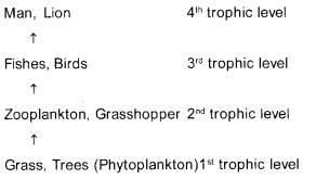 Plus Two Botany Chapter Wise Previous Questions Chapter 7 Ecosystem 5