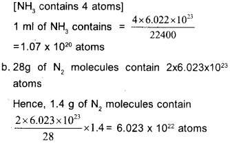 Plus One Chemistry Chapter Wise Questions and Answers Chapter 1 Some Basic Concepts of Chemistry 21