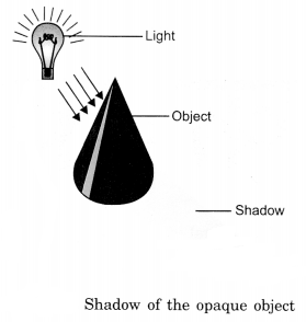 Light, Shadows and Reflection Class 6 Notes Science