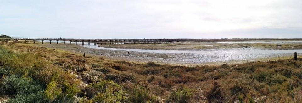 panoramica Parque Natural de la Ria Formosa Algarve Portugal 15