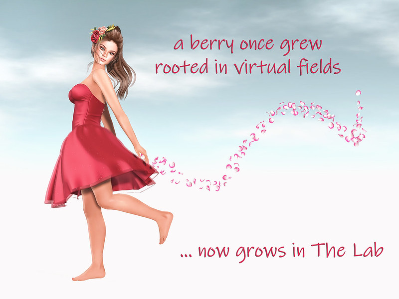 #SecondLifeChallenge Haiku Poetry Day