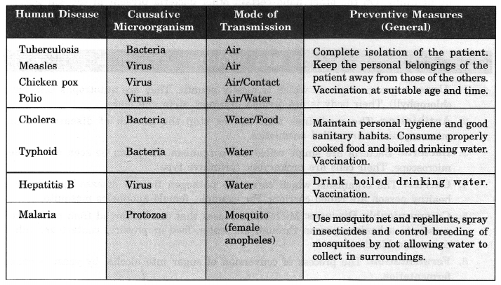 Microorganisms Friend and Foe Class 8 Notes Science Chapter 2 1