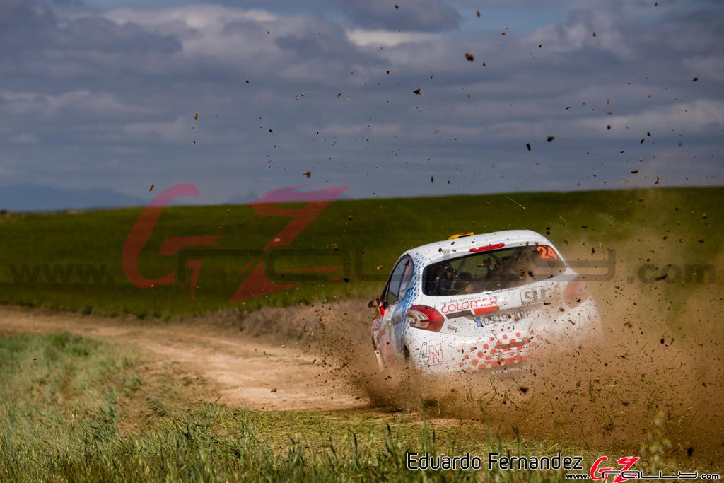 Rally_Navarra_EduardoFernandez_19_0029