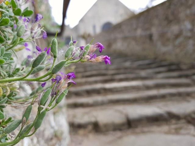 Escalier de l'église de Rochefort en Yvelines