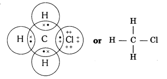 NCERT Solutions for Class 10 Science Chapter 4 Textbook Chapter End Questions Q4