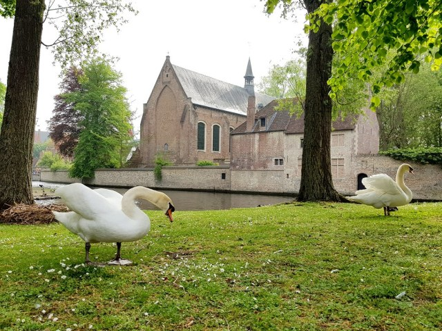 Bruges : Minnewaterpark