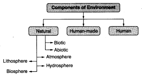 Environment Class 7 Notes Geography Chapter 1